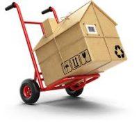 Kiến Vàng chuyển nhà huyện Phúc Thọ bằng xe tải chở hàng 9 tạ