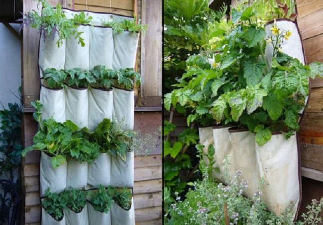Làm vật dụng trồng cây